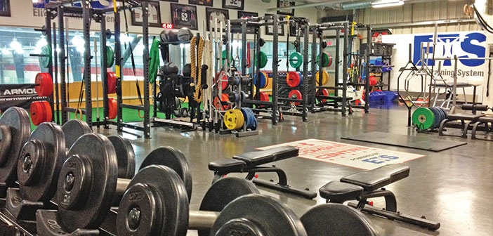 Go-To Gyms: Elite Training Systems